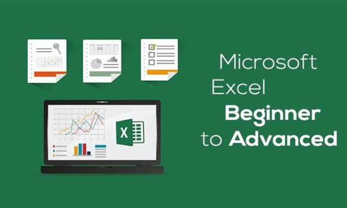 Microsoft Excel 2016 – Excel From Beginner to Advanced Free
