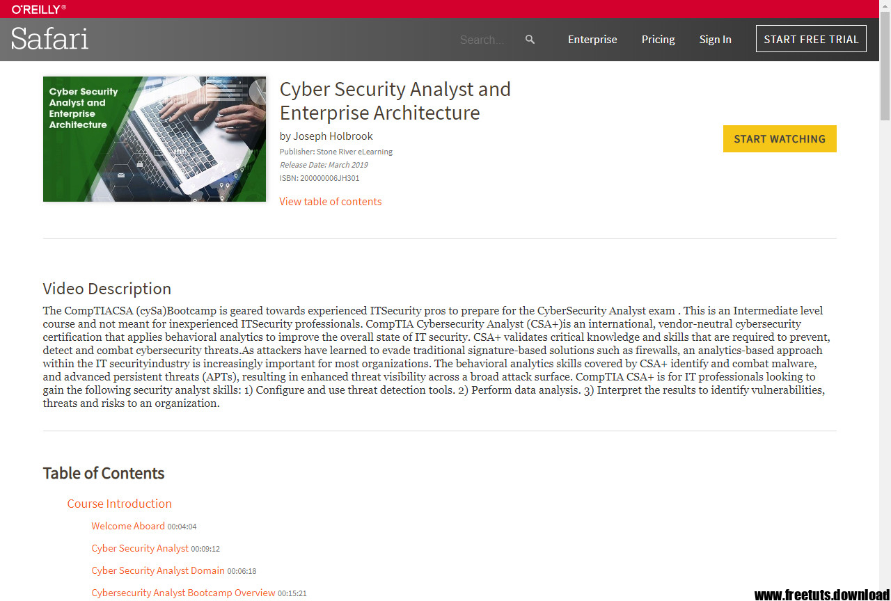 Cyber Security Analyst and Enterprise Architecture Free