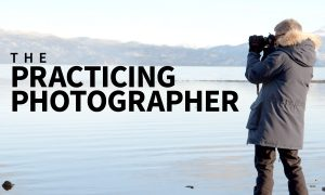 Lynda – The Practicing Photographer (Updated 7-11-2019), FreeTuts Download