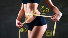 How To Lose Weight With A Busy Lifestyle, FreeTuts Download