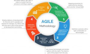 Implementing an Agile approach to project management, FreeTuts Download