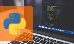 Python Programming for beginners Quickly learn python, FreeTuts Download