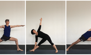 Complete Beginner Yoga Course, FreeTuts Download