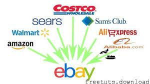The Full Ebay Dropshipping Course 2021 – Learn From Scratch, FreeTuts Download
