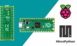 Raspberry Pi PICO an introduction with MicroPython, FreeTuts Download